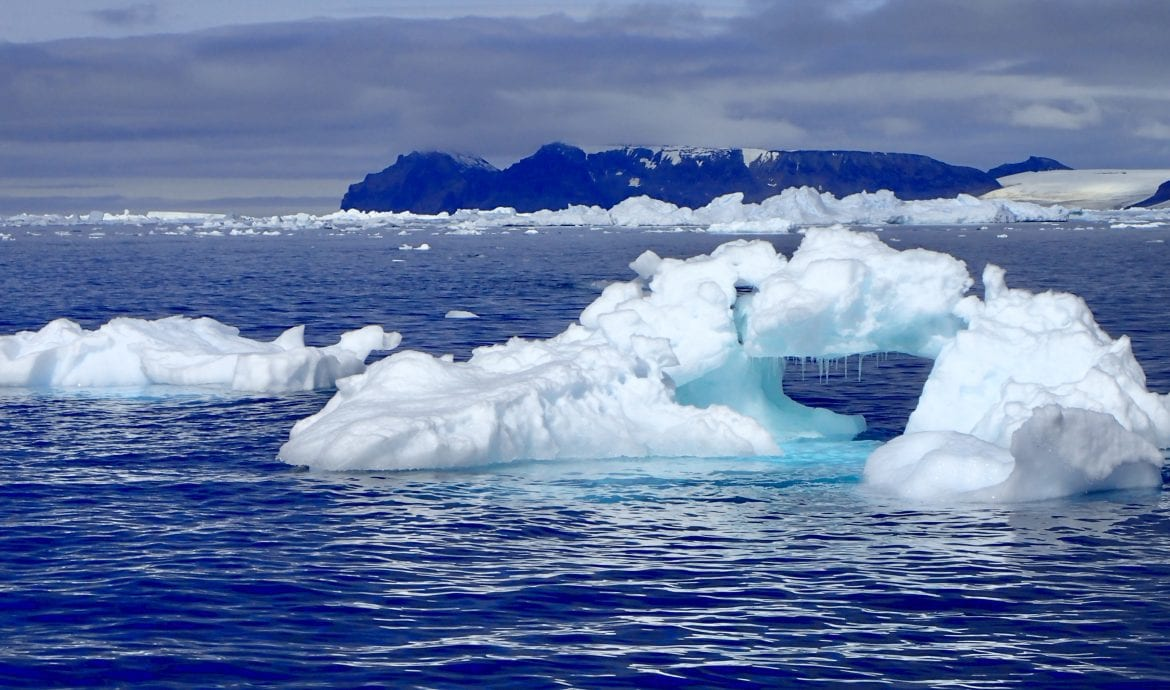 icebergs duse bay weddell sea